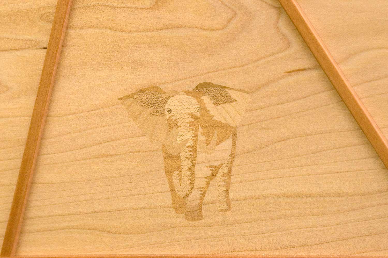 blanket chest elephant
